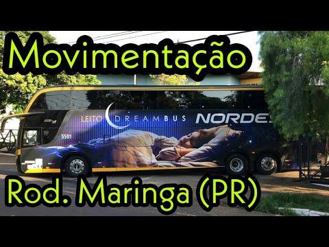 Movimentação Rodoviária Maringá (PR)   DreamBus Expresso Nordeste