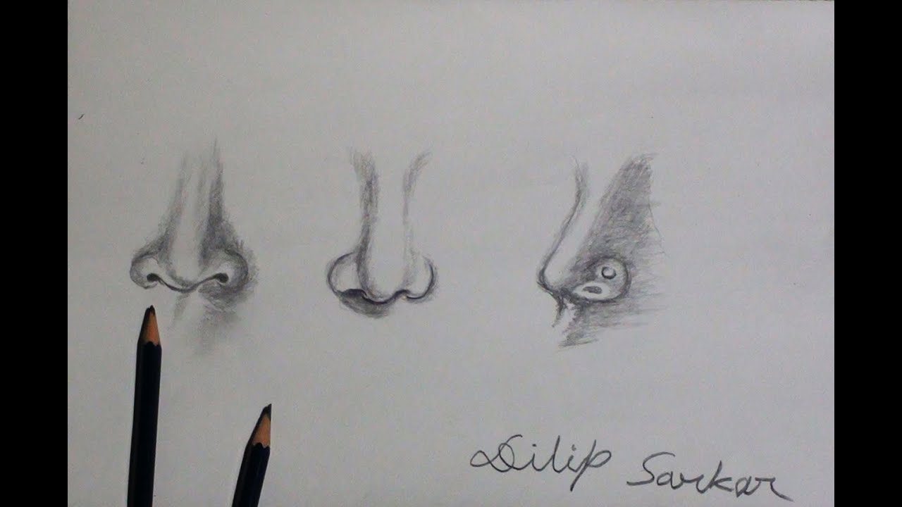 How To Draw  Different Nose  Shading With Pencil Dilip Realistic  Sketching