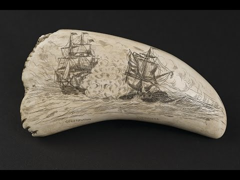 Etched Into Art Scrimshaw At Mystic Seaport