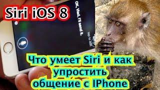 Siri 8 0 Что умеет Siri и как упростить общение с IPhone 4 5c 5s 6 6s и как с siri работать тесты оп
