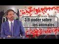 Dr. Armando Alducín 2017 -