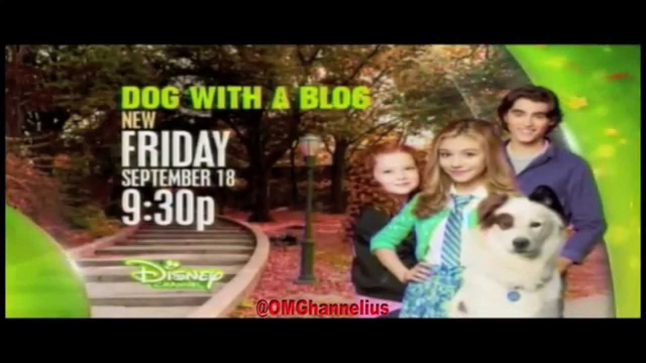 Watch Dog with a Blog Online - Full Episodes - All Seasons ...