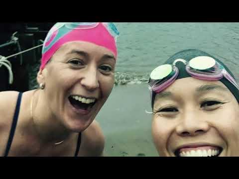 Why We Swim Bonnie Tsui
