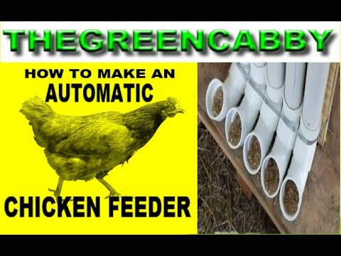 How To Make An Automatic Chicken Feeder How To Feed Chickens Bulk