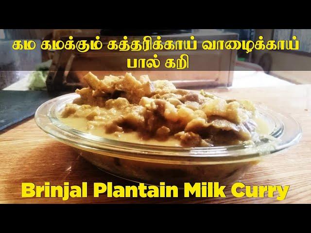 கம கமக்கும் கத்தரிக்காய் வாழைக்காய் பால் கறி | Sri Lankan Style Katharikai pal curry | Non spicy