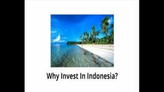 Indonesia Foreign Direct Investment Opportunities