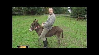 Raab in Gefahr auf dem Öko-Bauernhof - TV total