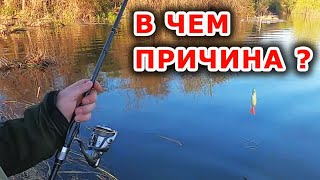 Место руки или приманка виновата как считаете Рыбалка на спиннинг с берега