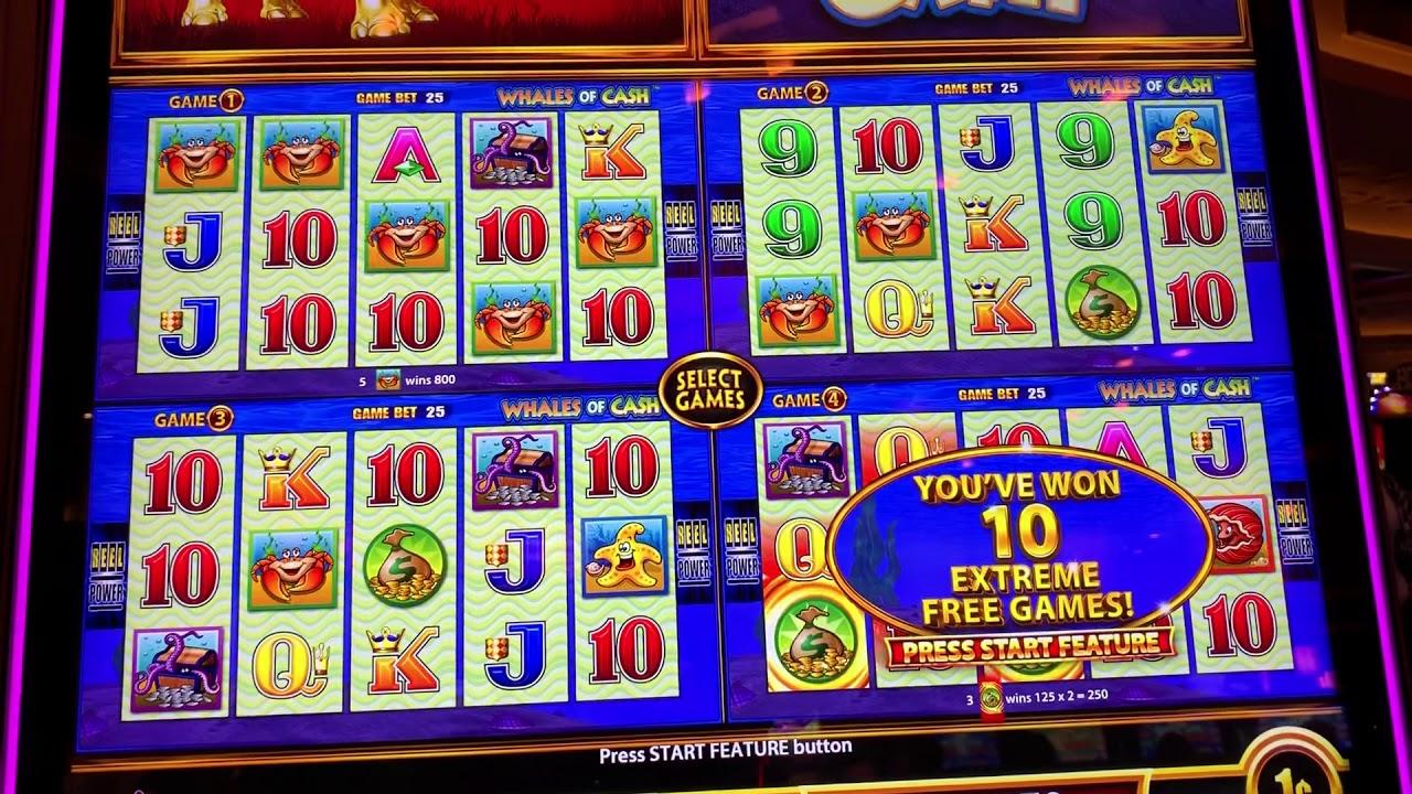 Money rain slot machine