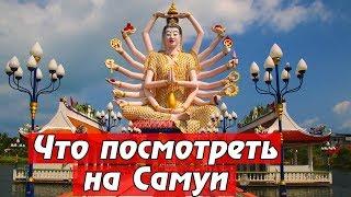 Таиланд: ЛУЧШИЕ ДОСТОПРИМЕЧАТЕЛЬНОСТИ на Самуи. Биг Будда, Храм Плай Лаем. Спасли черепаху