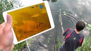 видео Подводная камера для рыбалки своими руками