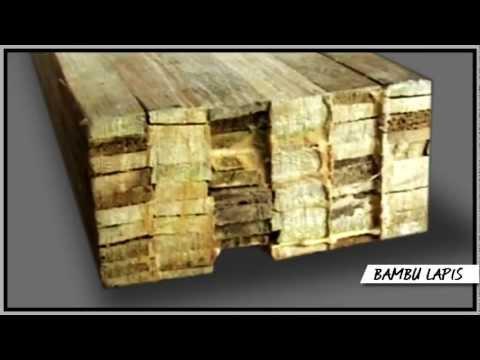 Laminated Bamboo: The Future Wood