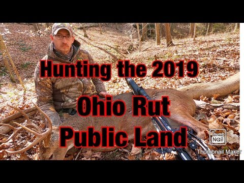 Hunting The 2019 Ohio Rut Public Land
