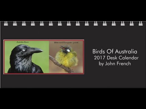 Calendars For Cancer - 2017 Australian Bird Desk Calendar