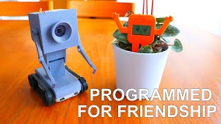 Programmed for friendship