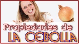 Propiedades De La Cebolla - Las 10 Propiedades Más Conocidas de la Cebolla