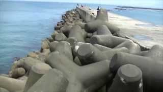 Tetrapod in Japan: They are everywhere