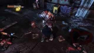 Batman: Arkham City Harley Quinn