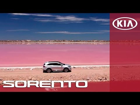 Неймовірні пригоди з KIA Sorento | National Geographic X The New Sorento | KIA Sorento | KIA