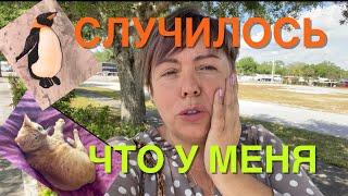 УЖАСНАЯ СИТУАЦИЯ, КУДА БЕЖАТЬ ОТ ДОРОГУЩЕЙ АМЕРИКАНСКОЙ МЕДИЦИНЫ ?! #Lena Happy, #Лена Хеппи