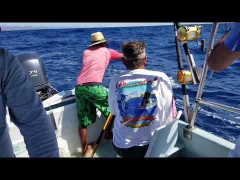Huatulco Fishing-January 2019 4K