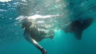 EP.9 Sailing Vessel Prism; Exploring Mexico