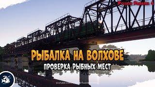 Рыбалка на реке Волхов Закрываем трофеев Driler Русская Рыбалка 4