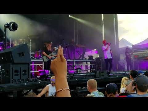 Dirty heads-Visions