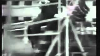World Record Show Jumping   Huaso Horse     YouTube2