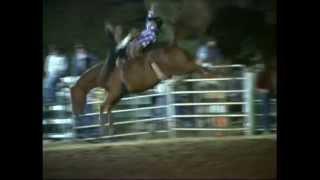 Rockin B Bareback ride wreck Taralga Rodeo  2014