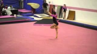 Hannah Fried Level 10 Gymnastics - Dalmatian Classic Floor