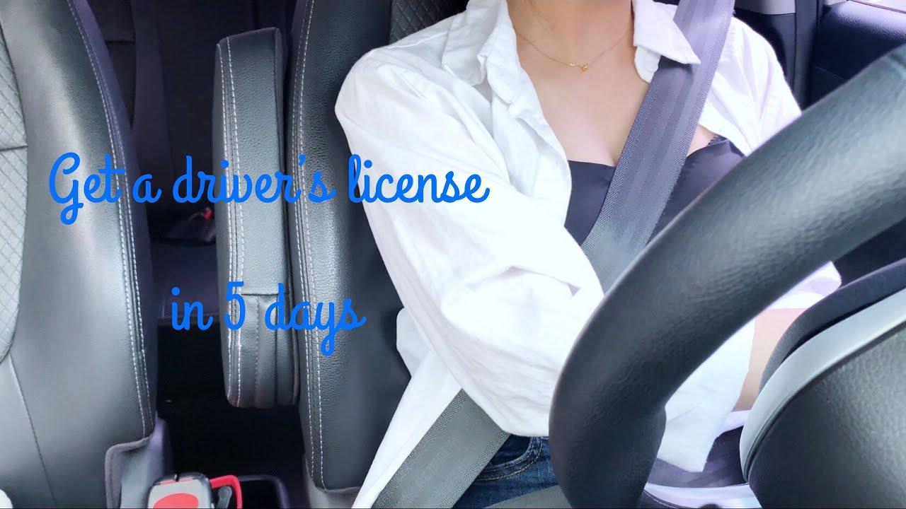 Vlog   5일만에 면허 따기   운전 면허 브이로그