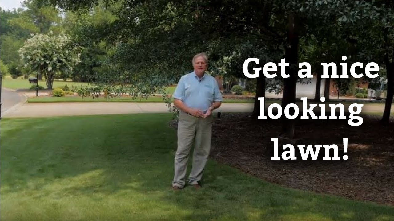 A Nice Looking Lawn Expert Care Tips