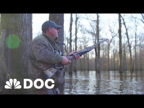 Where Did They Go? Arkansas Hunters At A Loss As Ducks Disappear | NBC News