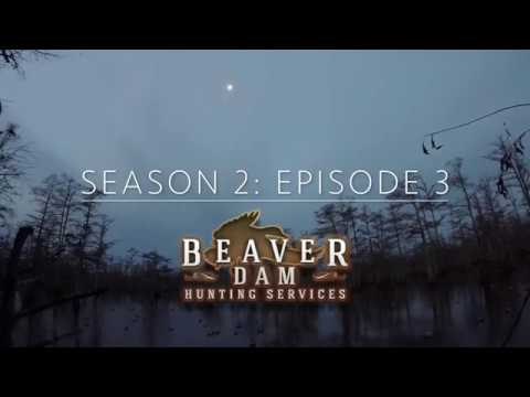 Season 2: Episode 3 - Beaver Dam Hunting Services