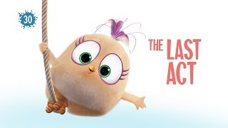 Angry Birds Blues | The Last Act - Ep30 S1