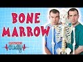 Operation Ouch - Bone Marrow   Biology for Kids