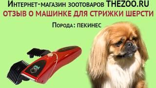 Отзыв: Светлана Ивановна, машинка Codos CP-8000, порода - пекинес