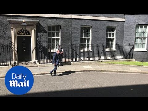 Cabinet reshuffle: MPs Chris Grayling and Justine Greening arrive at number 10 - Daily Mail