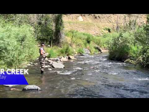 Fly Fishing Bear Creek, Colorado