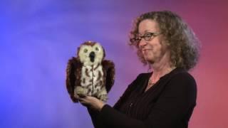 Folkmanis® Saw-whet Owl Puppet Demo