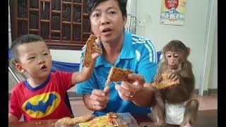 Baby Monkey   Monkey Doo's New Snack   Dried Banana With Coconut Sesame