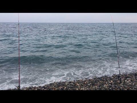 Ловля ласкиря в черном море с берега