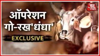 Khabardar: Police Books Case Against Cow Vigilante Group Leader In Punjab
