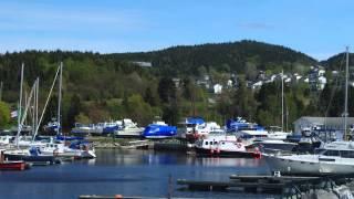 Our Adventure To Newfoundland