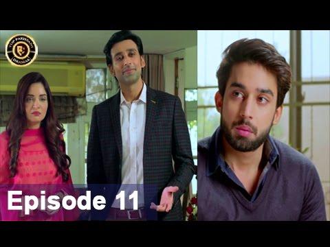 Rasm-e-Duniya Episode – 11 – 27th April 2017 – Armeena Khan & Sami khan Top Pakistani Dramas
