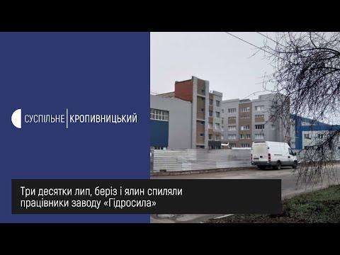 UA: Кропивницький: Три десятки лип, беріз і ялин спиляли працівники заводу «Гідросила»