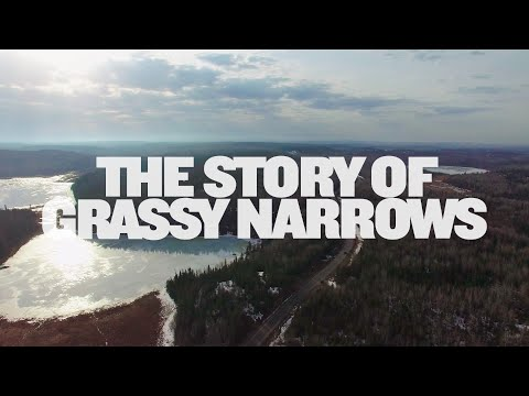 The Story Of Grassy Narrows
