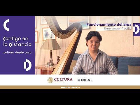 Emanuel Padilla, Arpa. Coordinación de Música y Ópera INBAL.