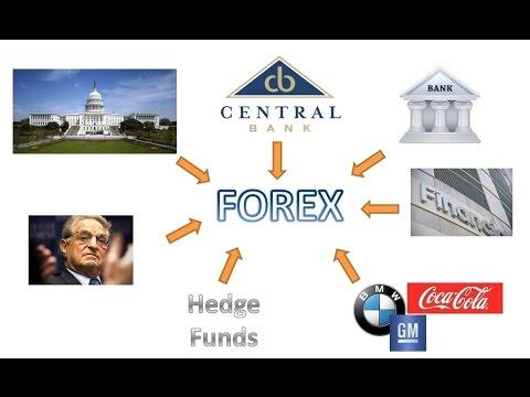 Как устроен рынок Форекс